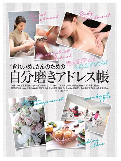 20160906-AneCan_kikaku